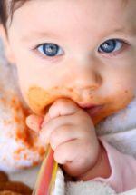 Dieta da Papinha de Bebê